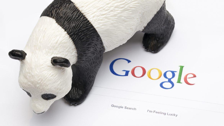 Googe Panda